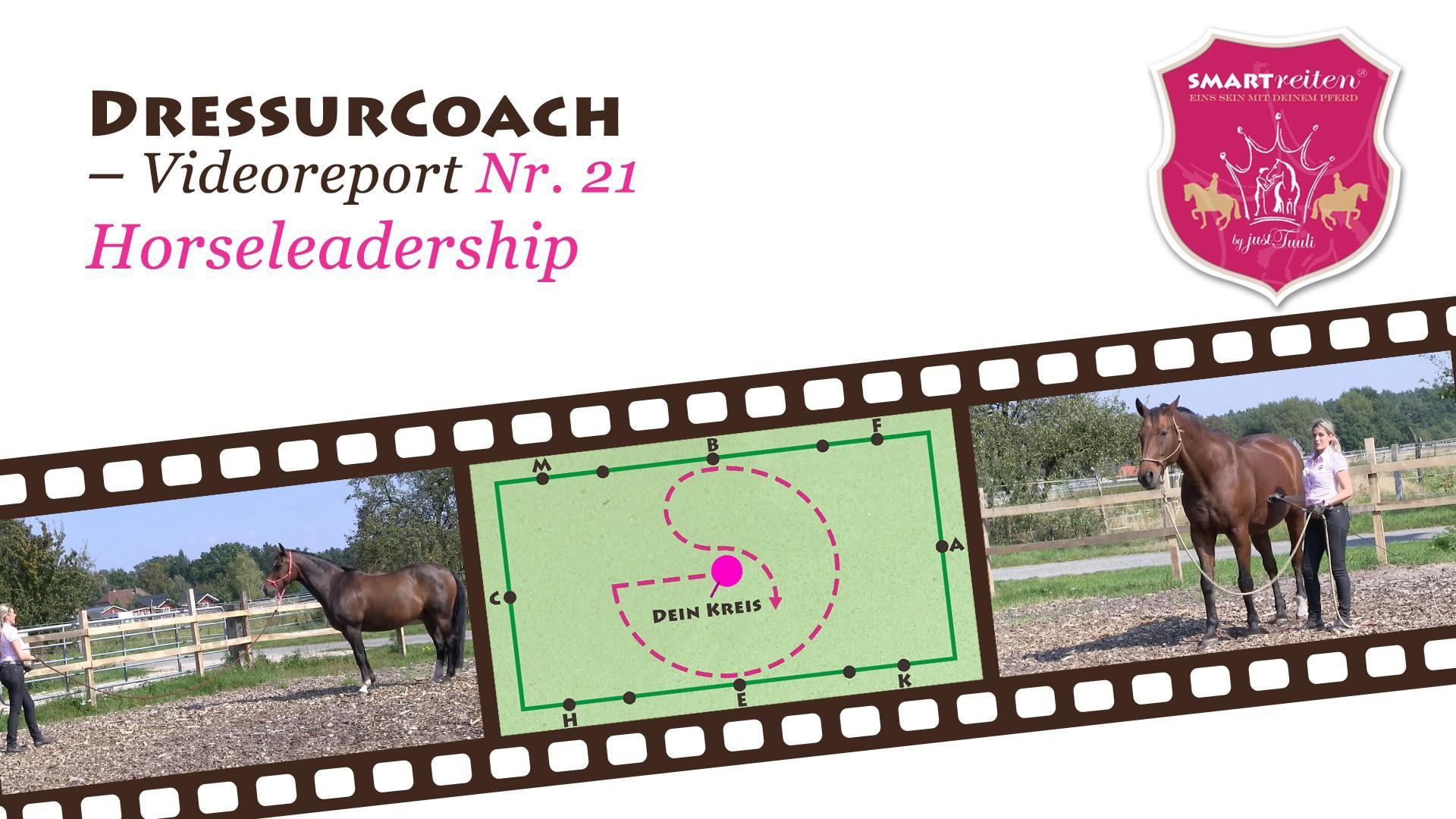 Horseleadership