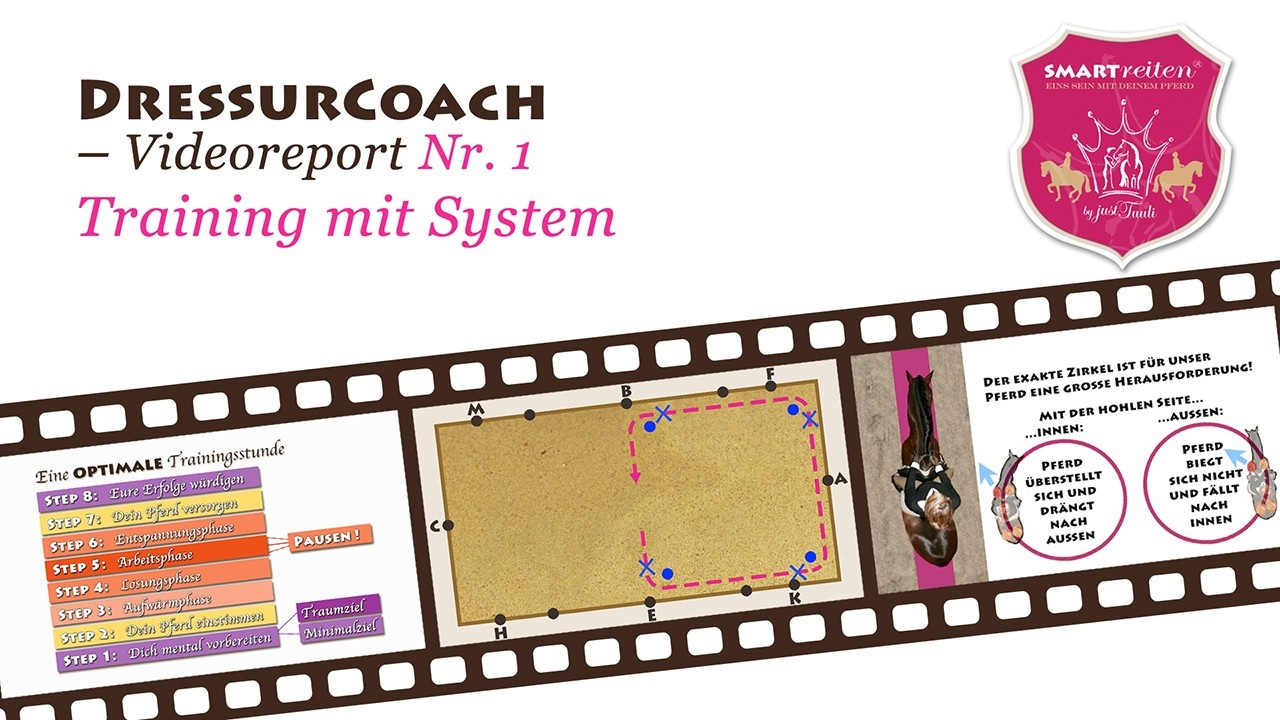 Training mit System
