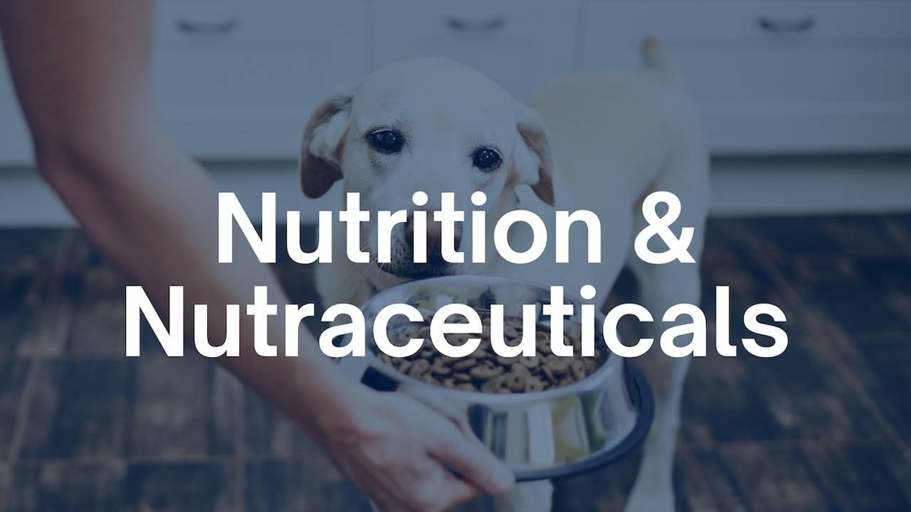 Nutrition and Nutraceuticals