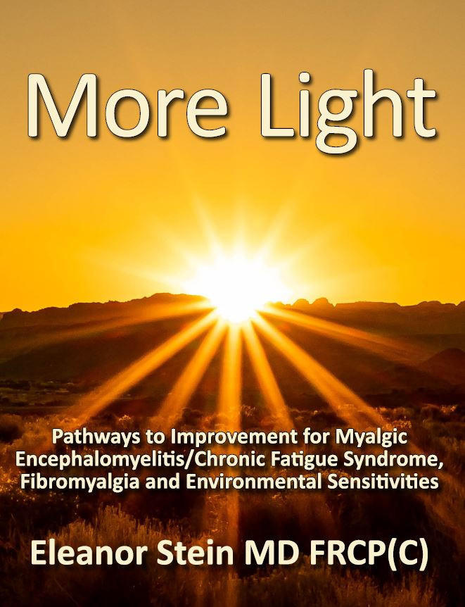 Let Your Light Shine Through e-book