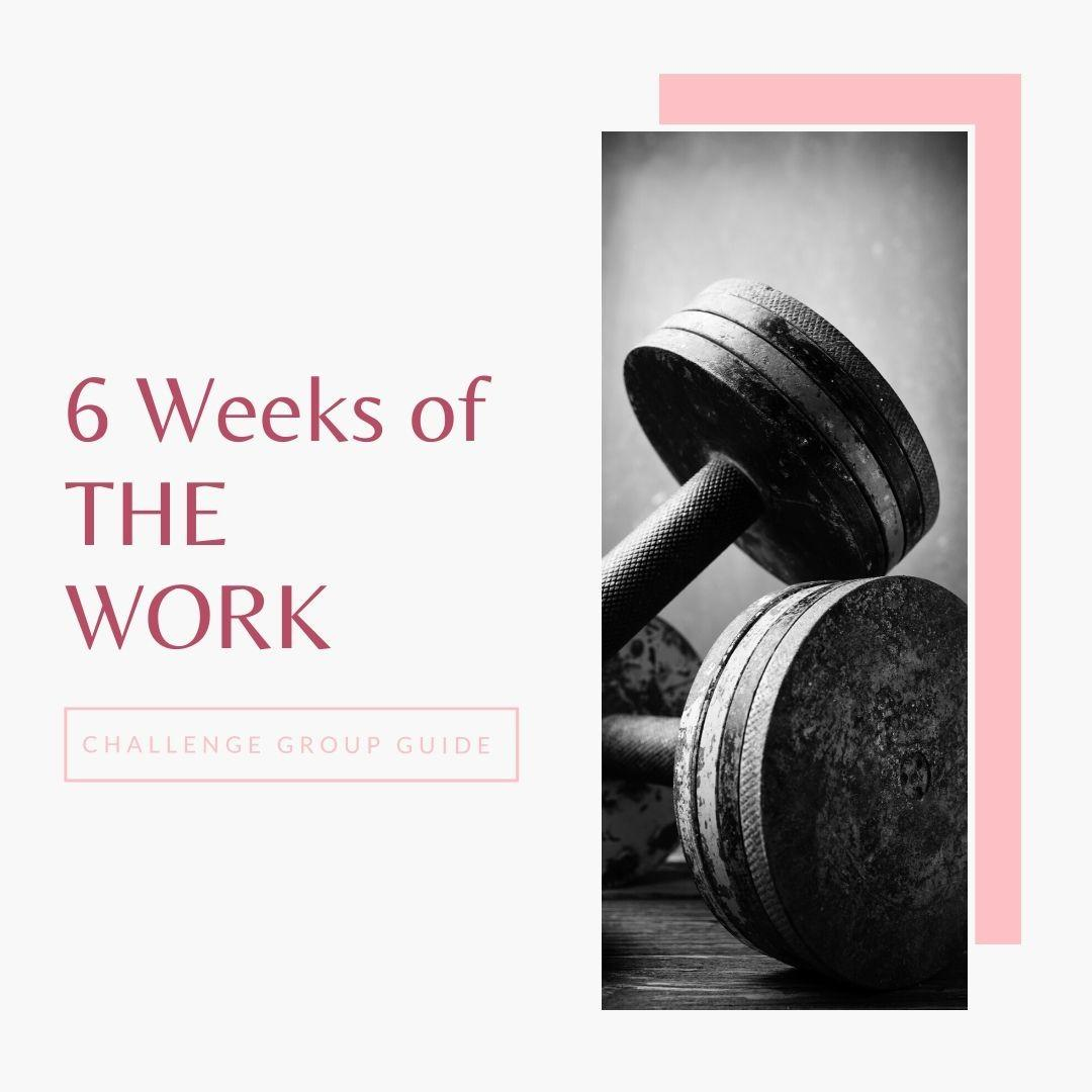 6 weeks of the work challenge group guide