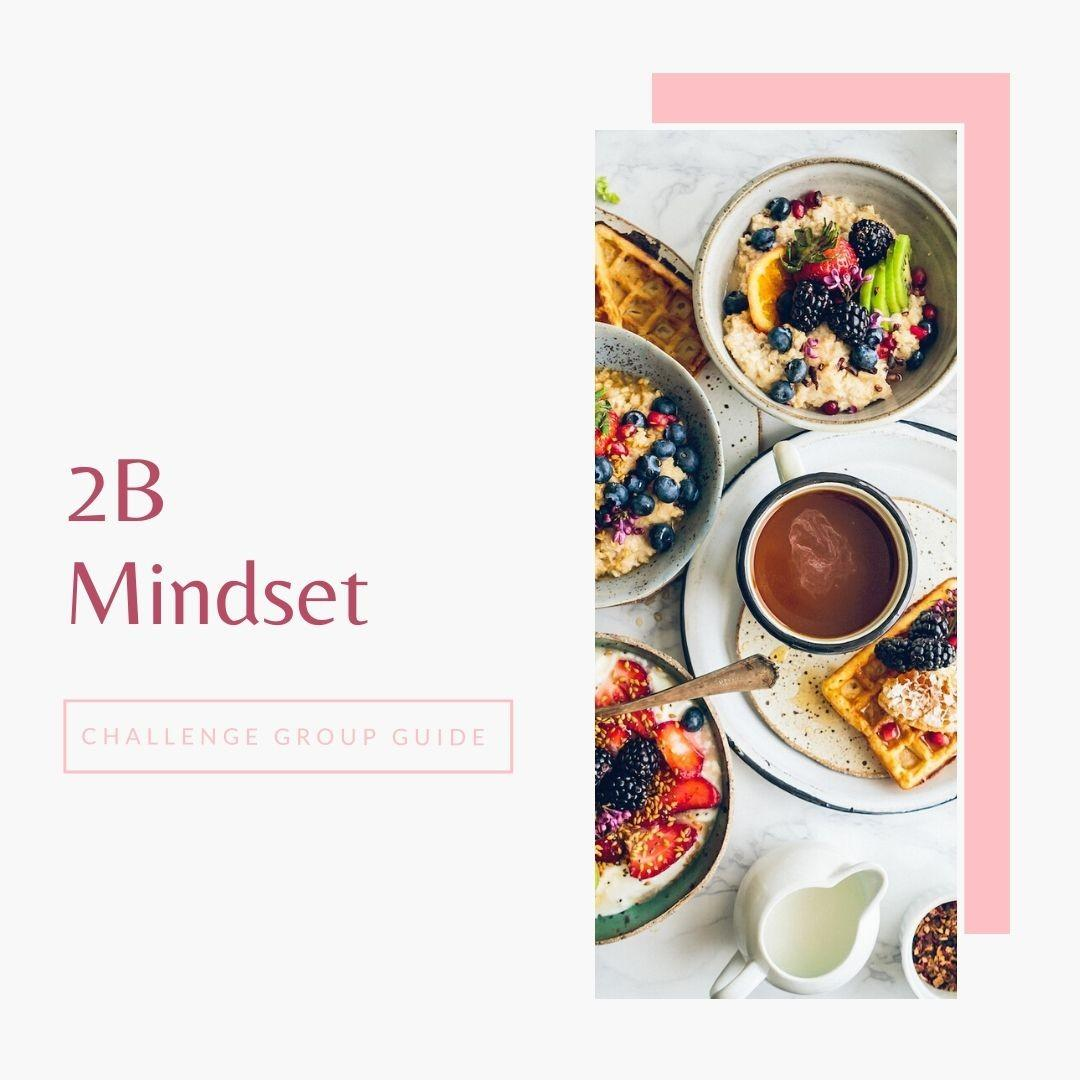 2b mindset challenge group guide