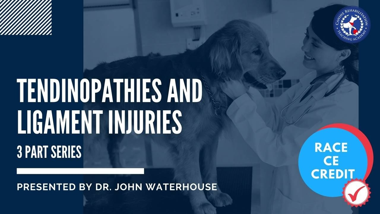 Tendinopathies and Ligament Injuries