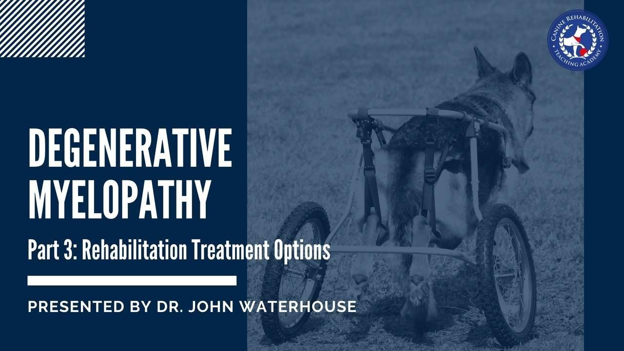Degenerative Myelopathy Part 3