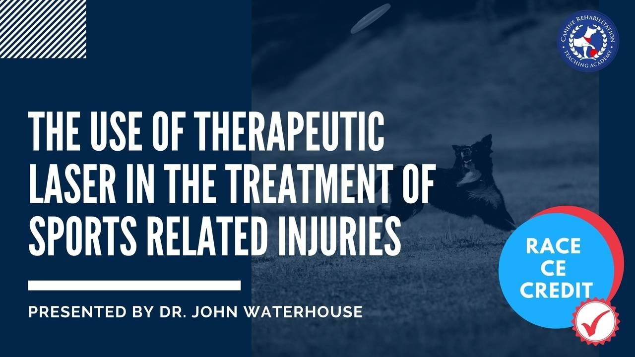 Therapeutic Laser in the Treatment of Sports Related Injuries
