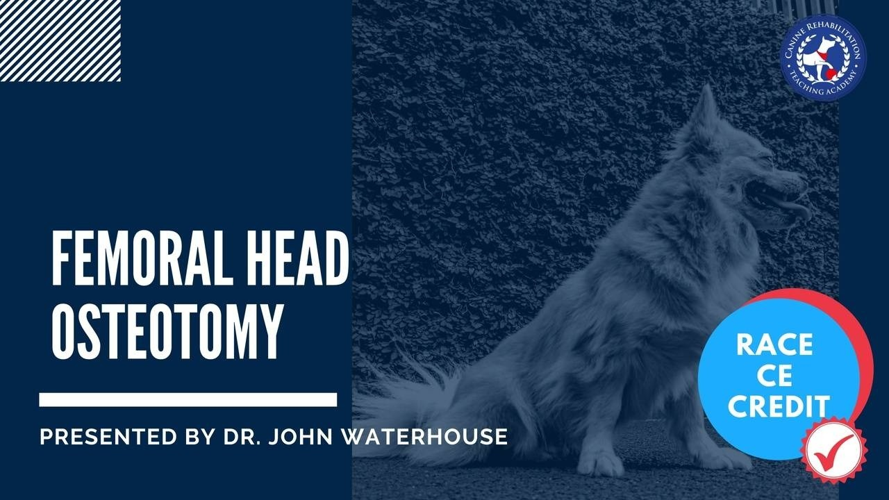 Femoral Head Osteotomy