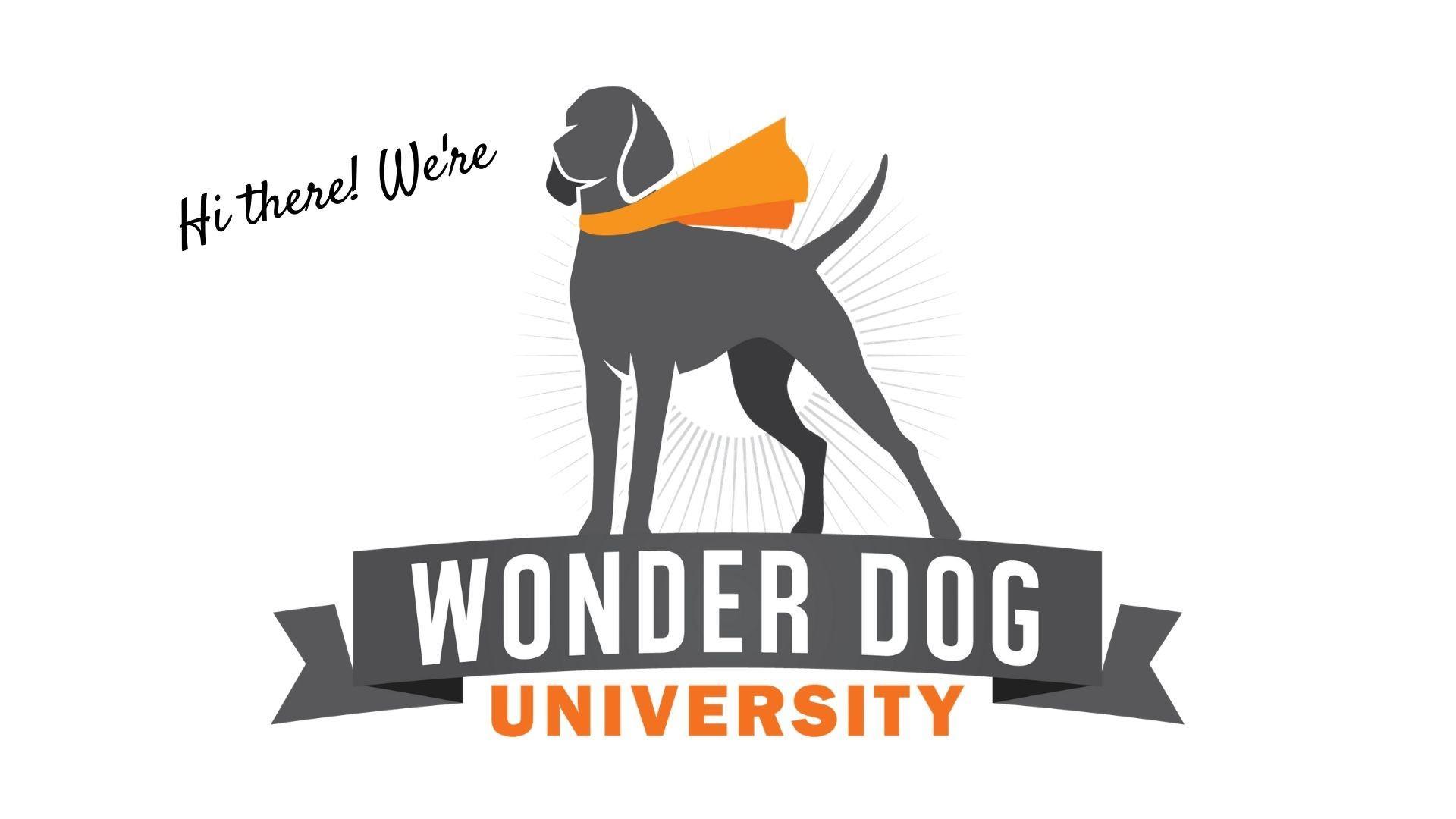 Wonder Dog University