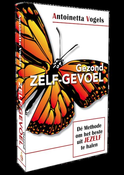 gezond zelfgevoel methode boek