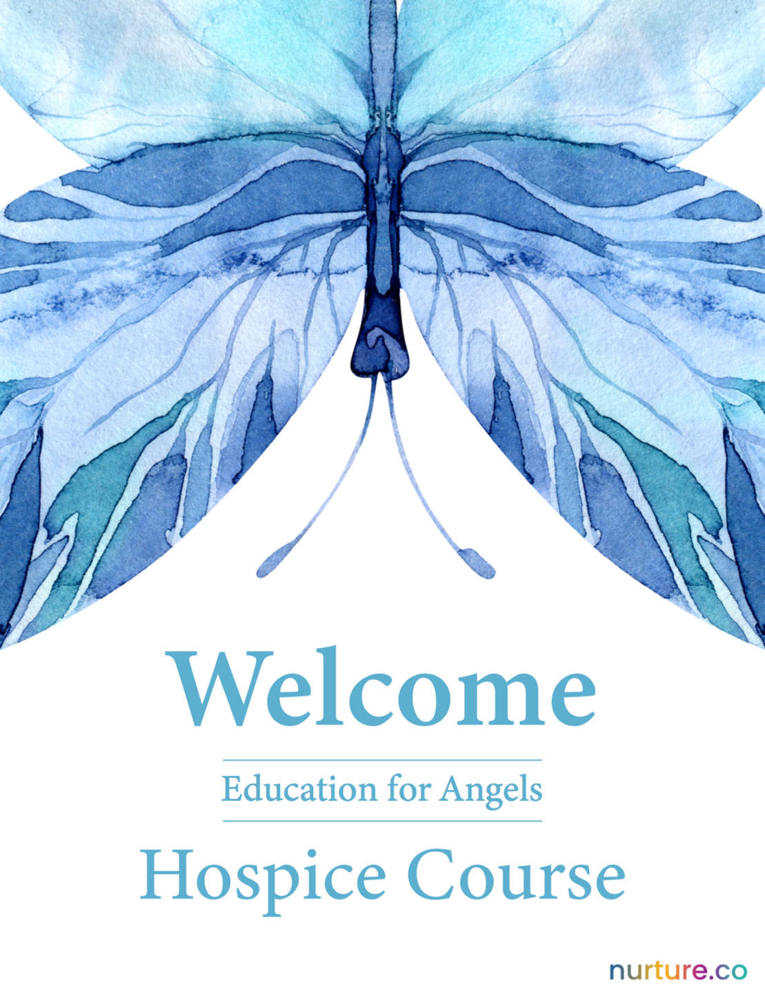 Blue Butterfly Banner Image