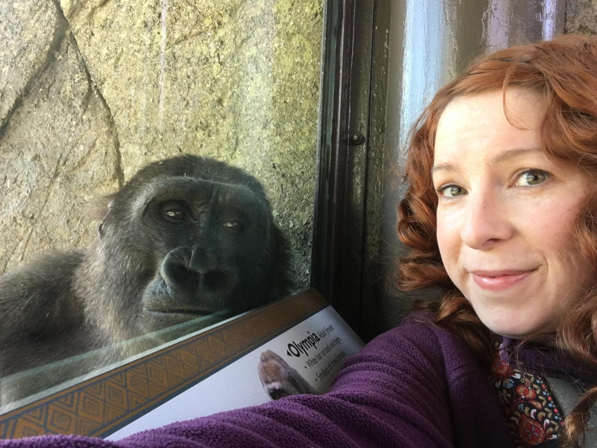gorilla with woman