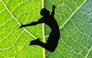Leaf Parkour