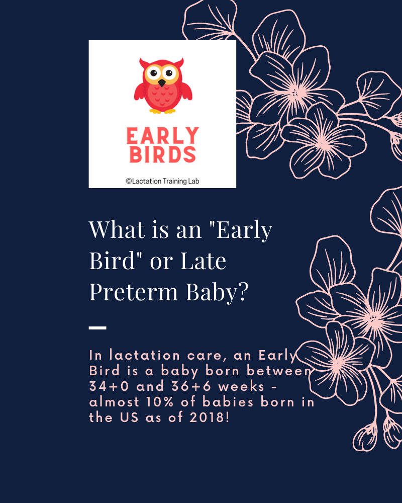 What Is An Early Bird? In lactation care, an Early Bird is a late preterm baby, born between 34+0 and 36+6 weeks gestation