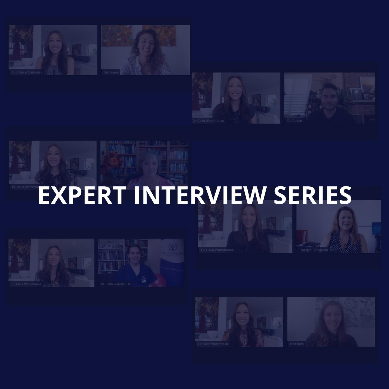 Expert Interview Series