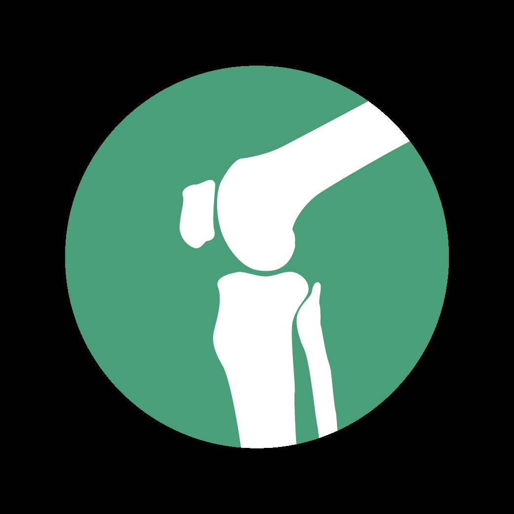 Prothèse du genou