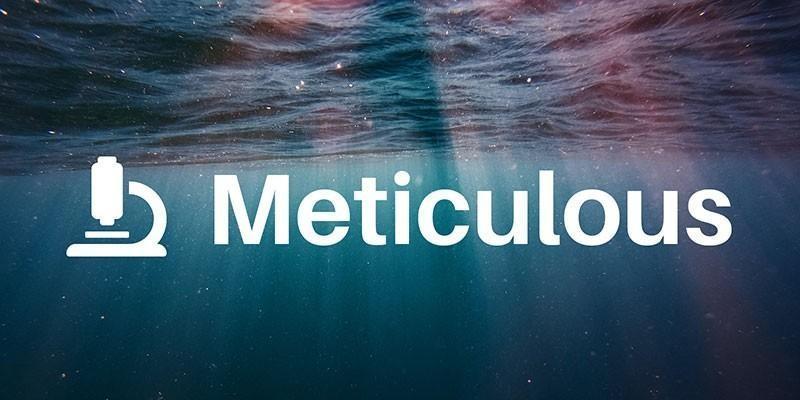 Meticulous