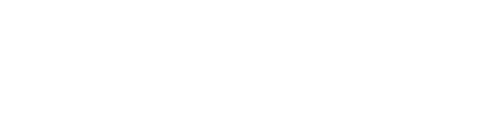 Two Turtle Doves Logo