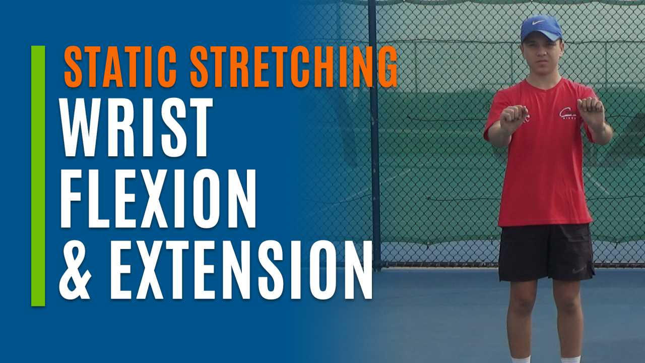 Wrist Flexion & Extension