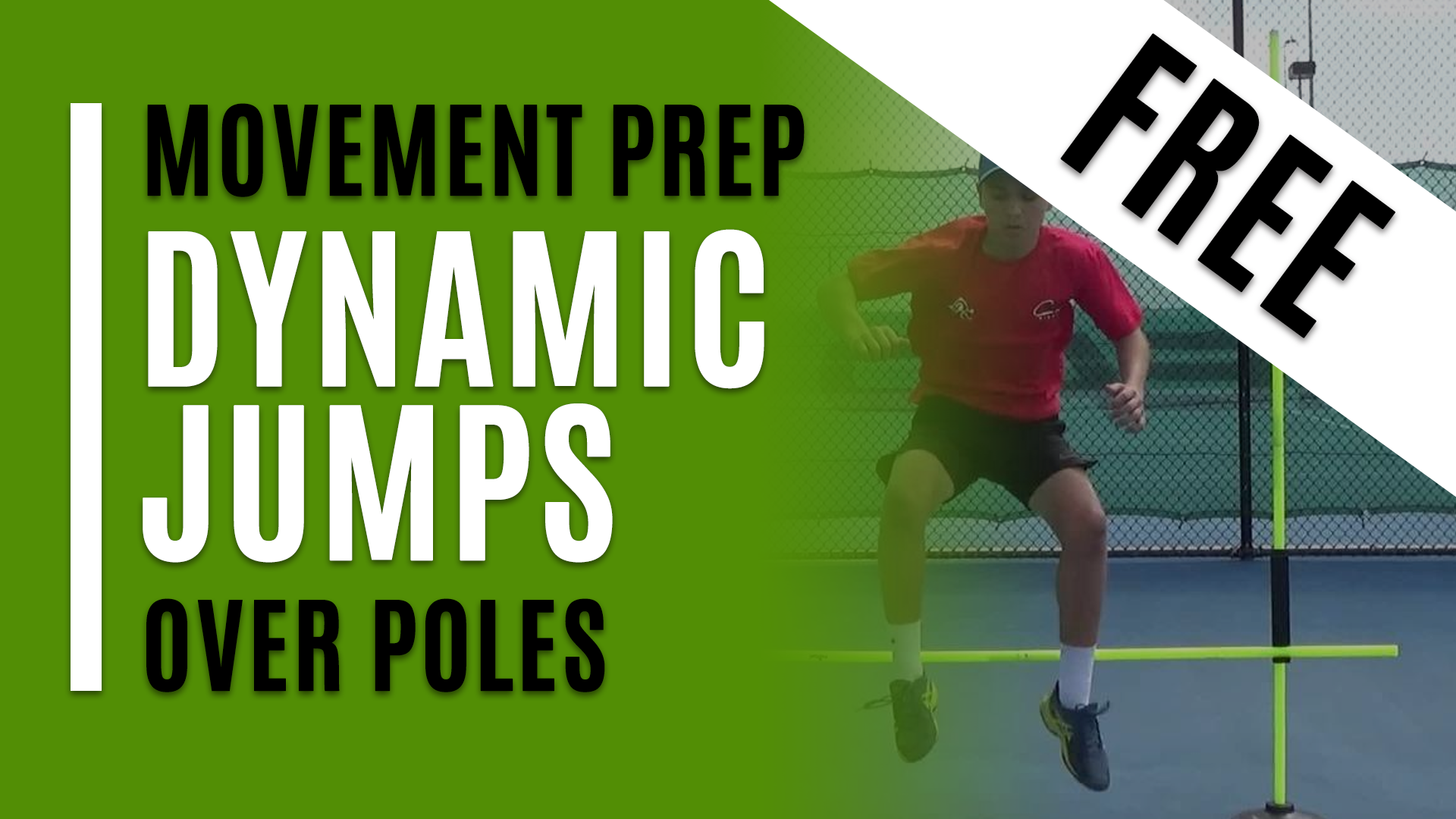 Dynamic Jumps Over Poles