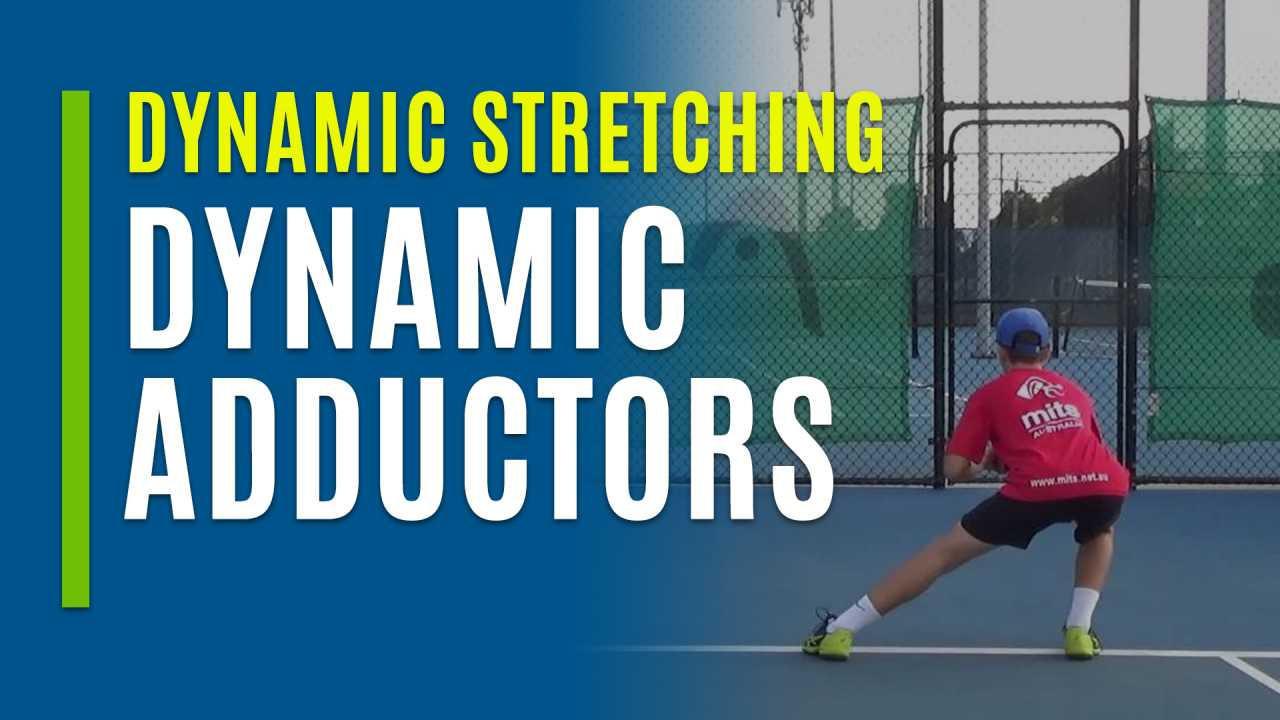 Dynamic Adductors