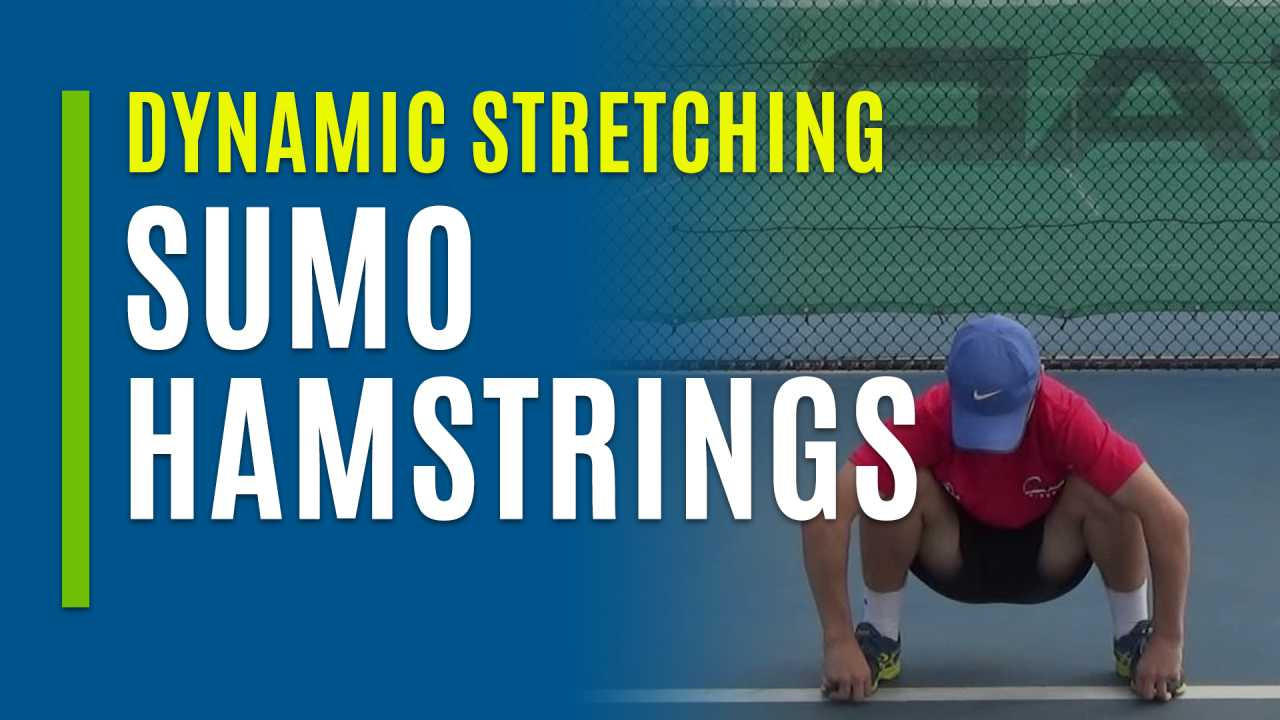 Sumo Hamstrings