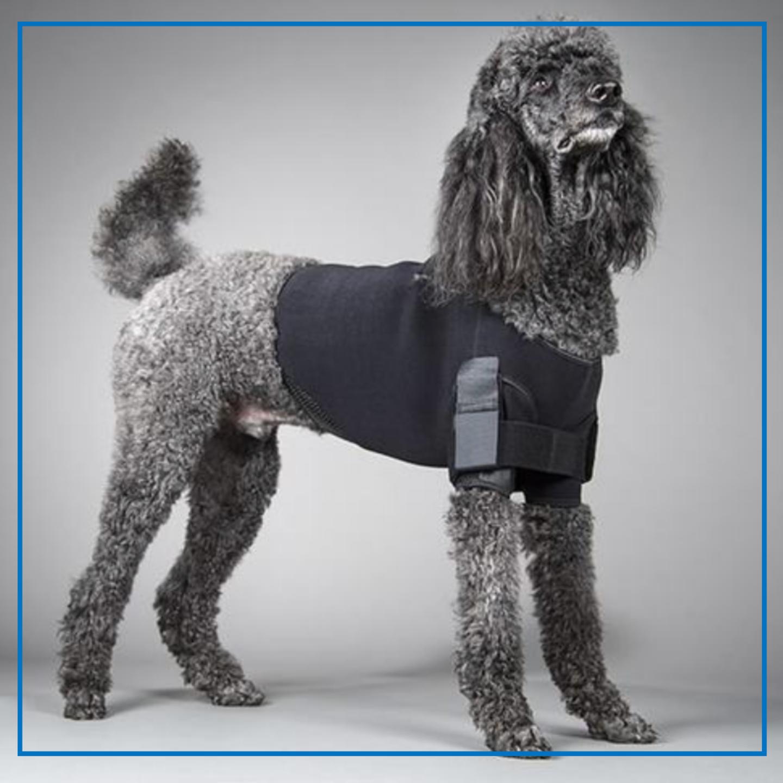 DogLegs (Shoulder Vest Stabilization)