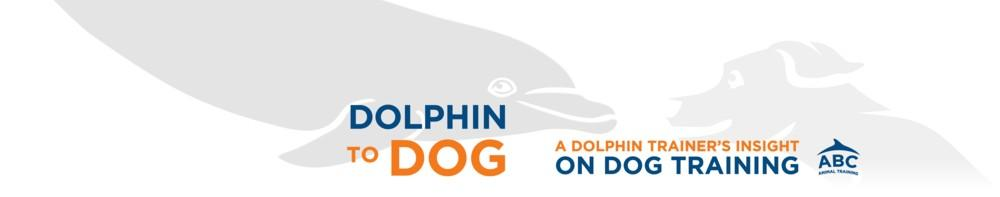 Dolphins To Dogs