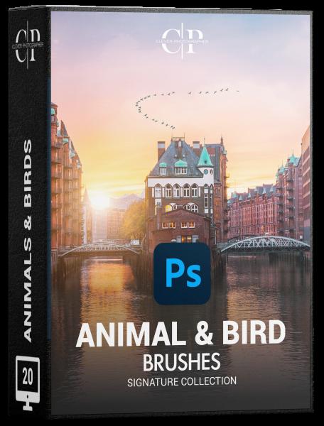 animal brushes