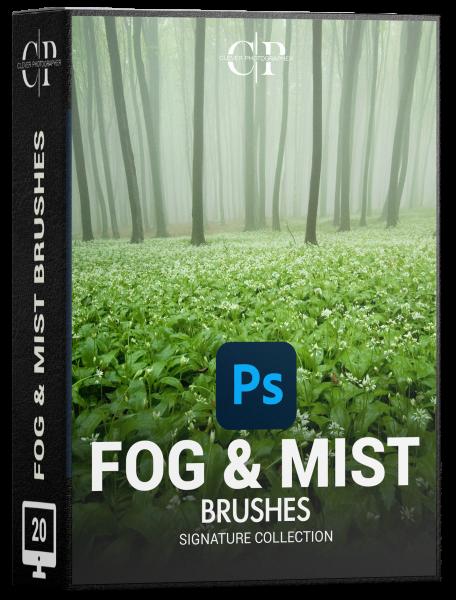 fog mist brushes