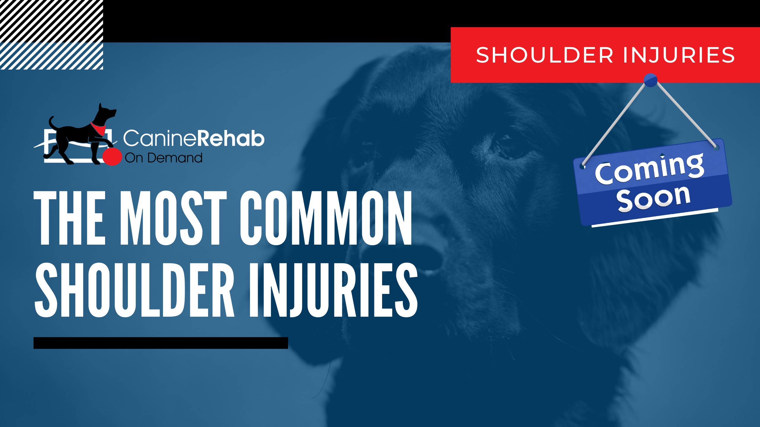 Most Common Shoulder Injuries Coming Soon