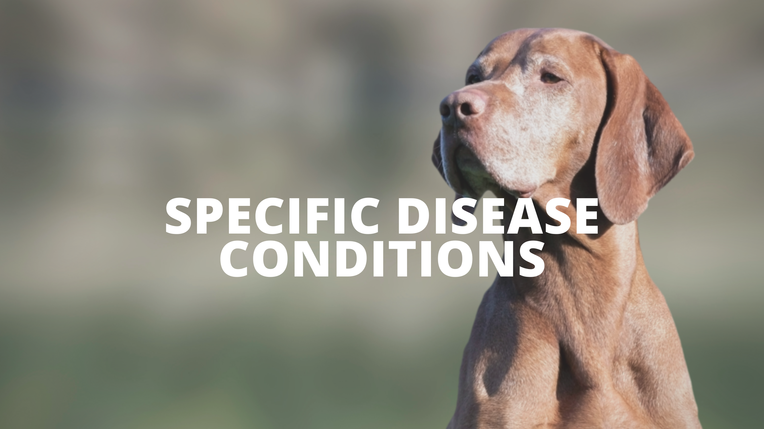 Specific Disease Conditions