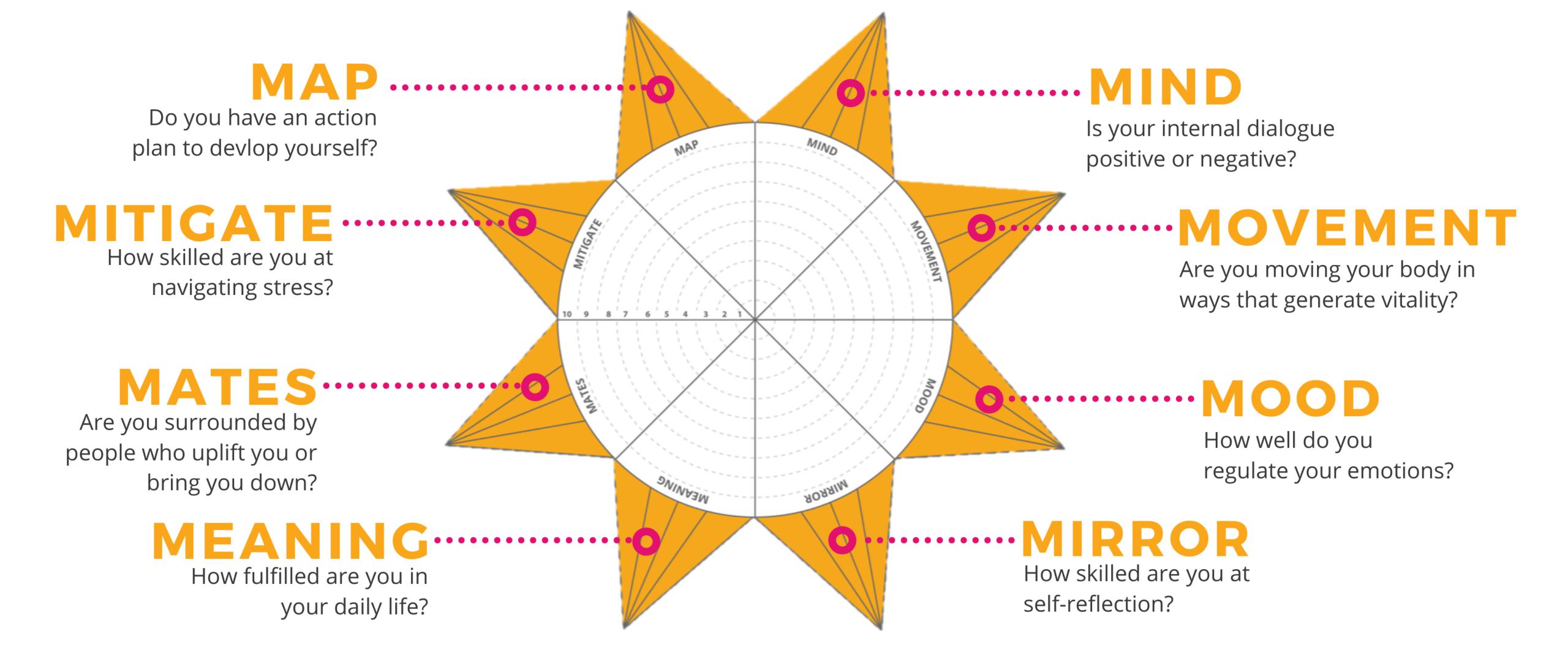 The 8 Impactful M's