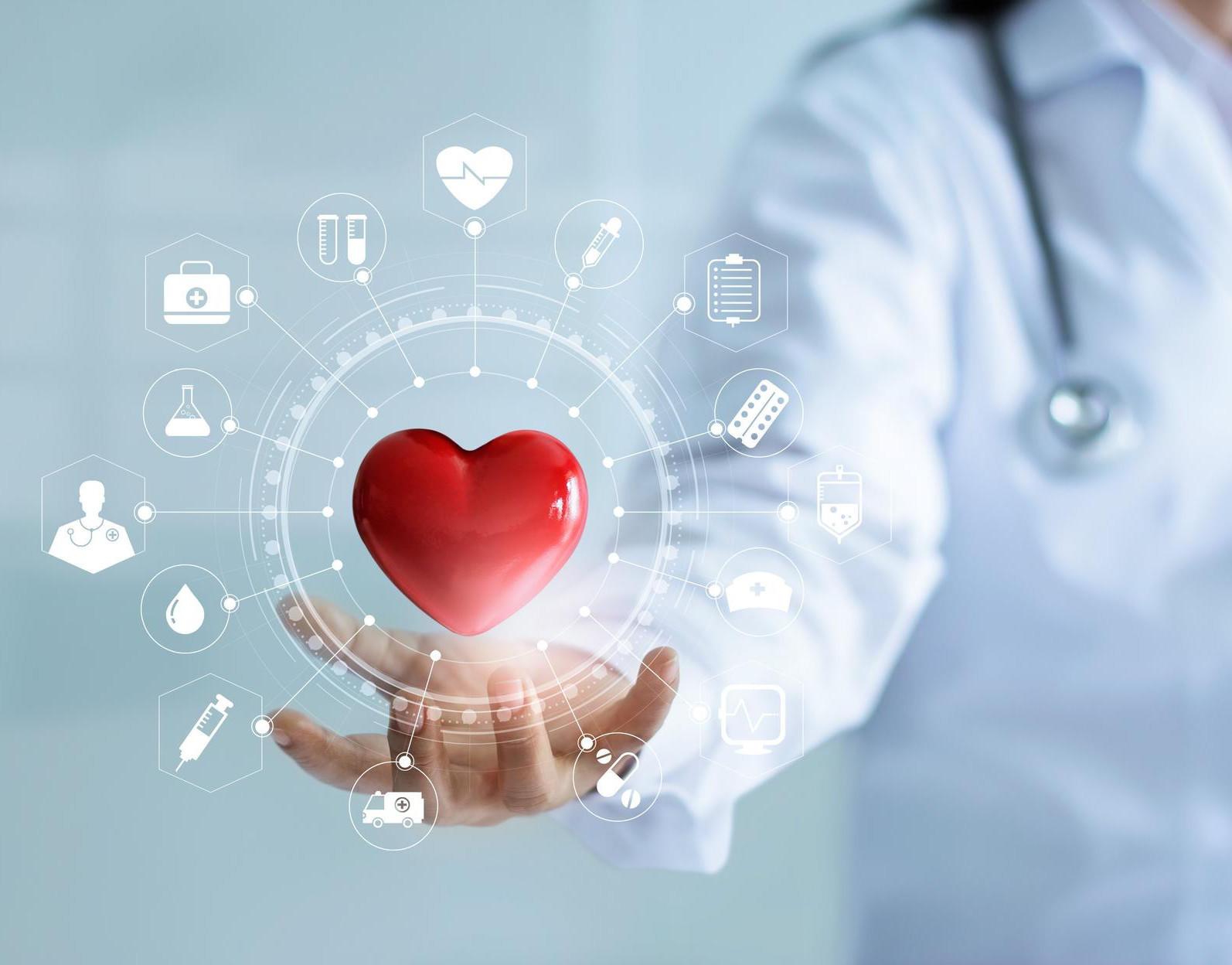 Ein grafisches Herz mit Pfeilen zu den Störfaktoren