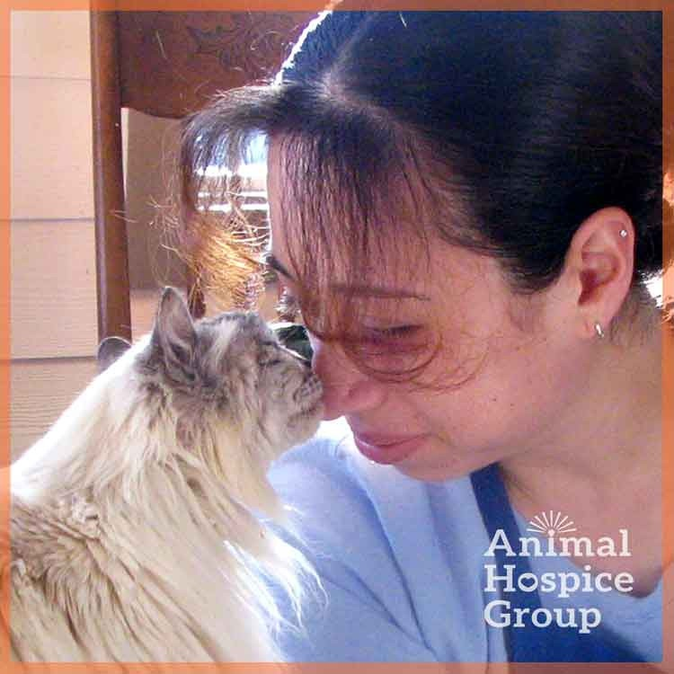 Animal Hospice Group - Be Social With Us!