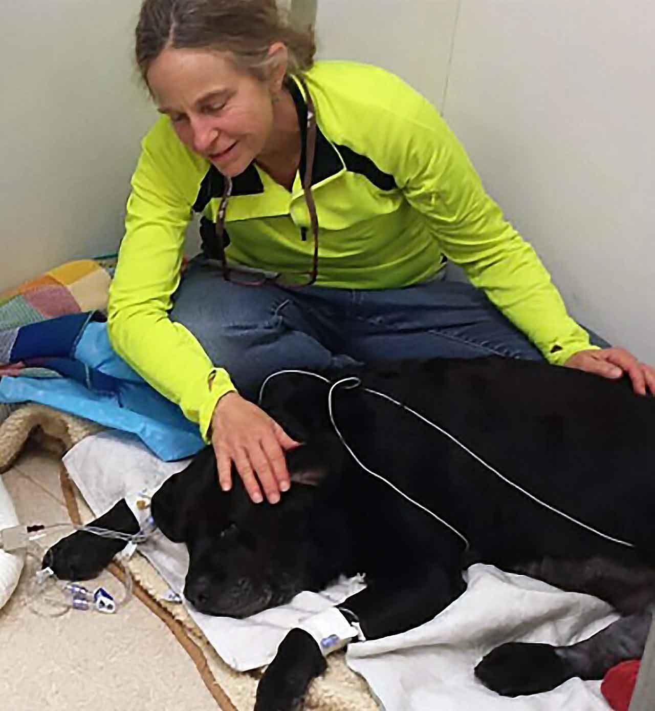 Animal Hospice Group - Elizabeth with Bodhi at the animal hospital