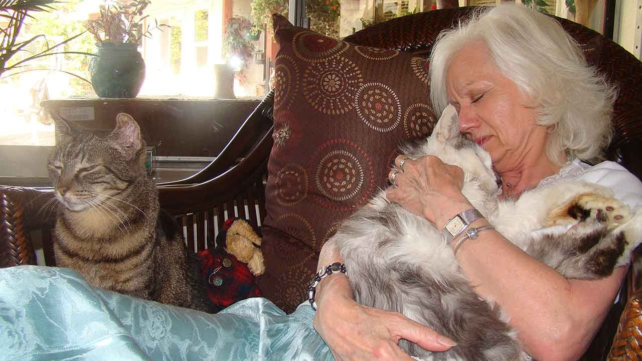 Animal Hospice Group - Gail comforting cat