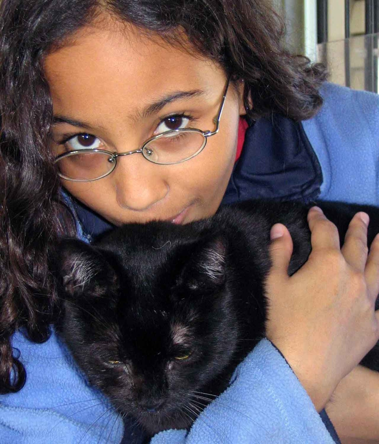Animal Hospice Group - Cat with family