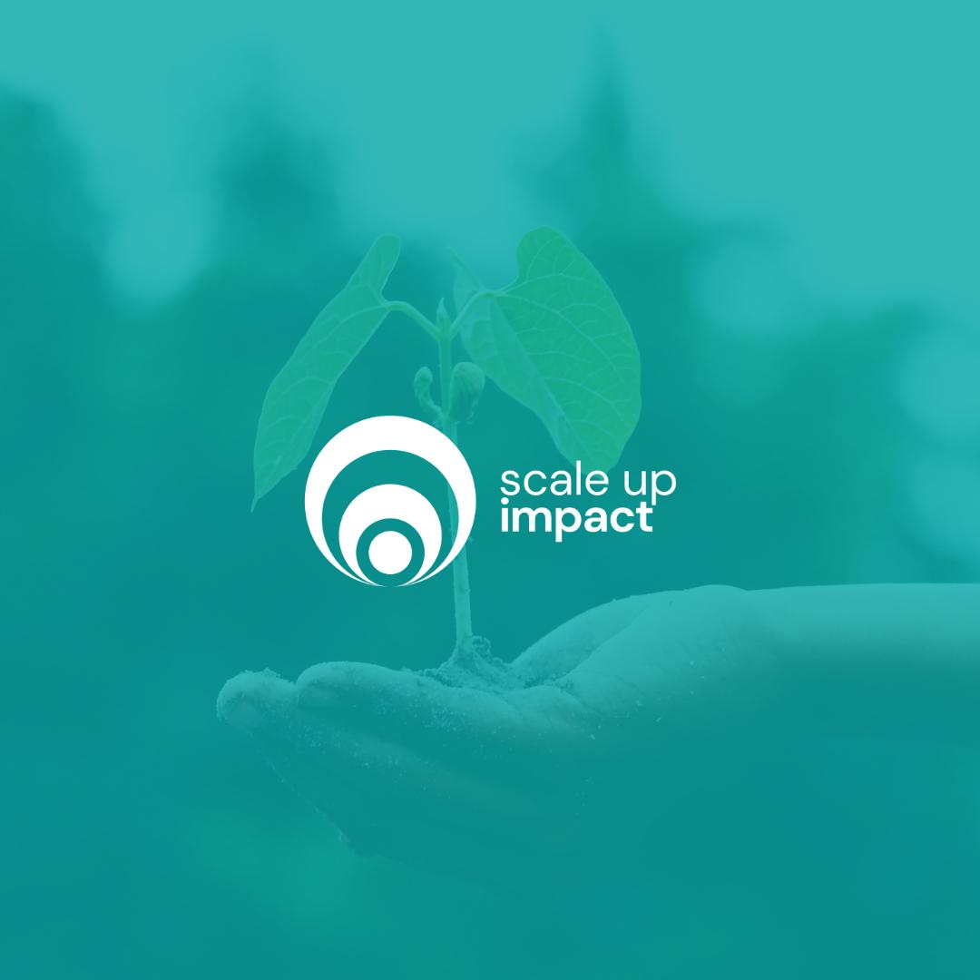 Gezonde bedrijf groei en bloei   Impact ondernemer