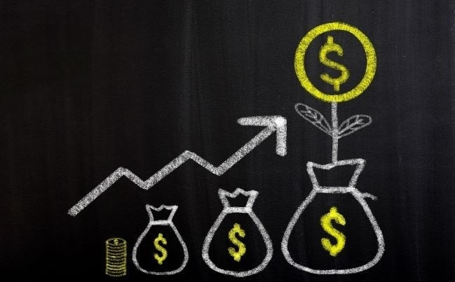 Raiz Invest (ASX:RZI)