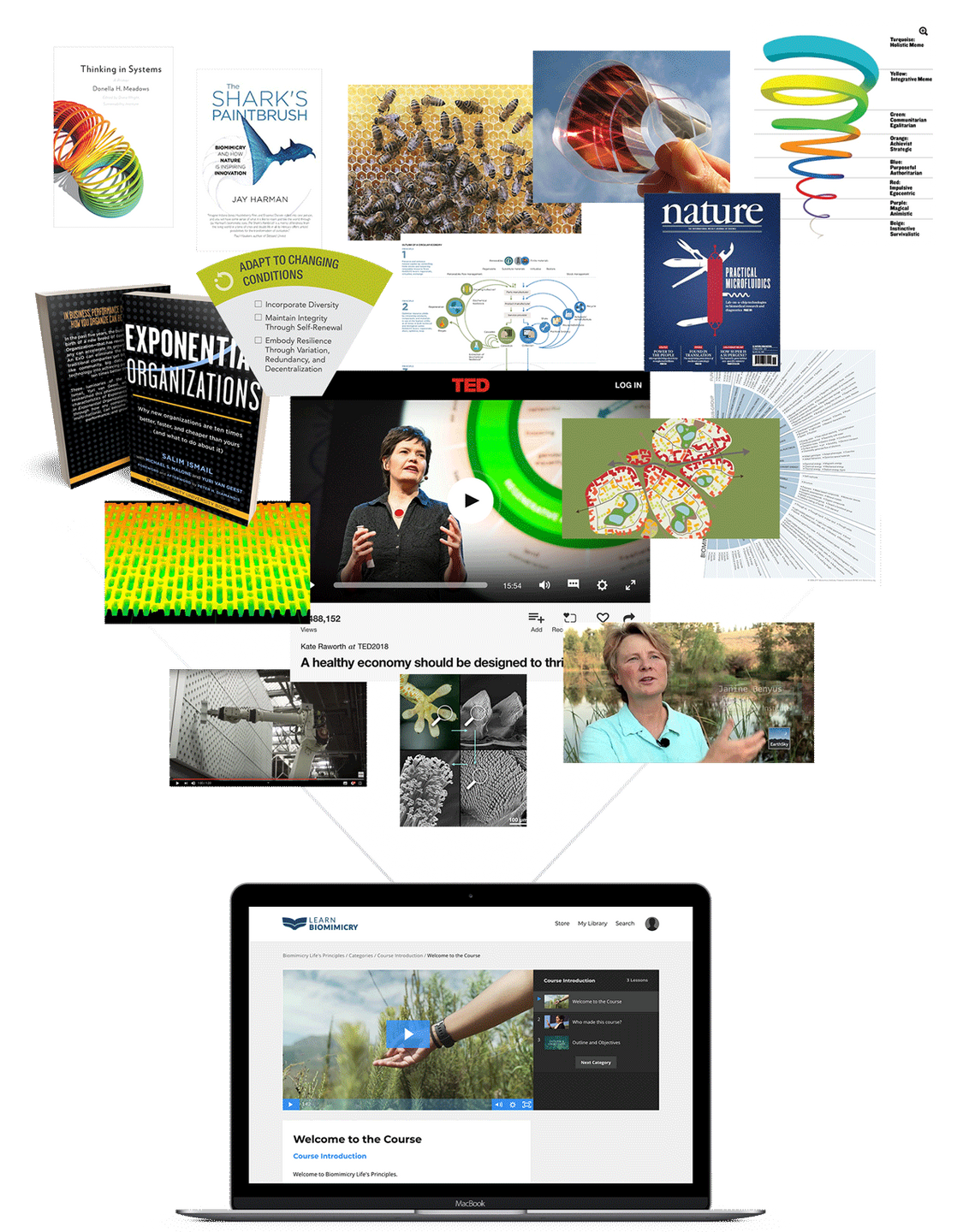 all biomimicry books and knowledge built into our courses
