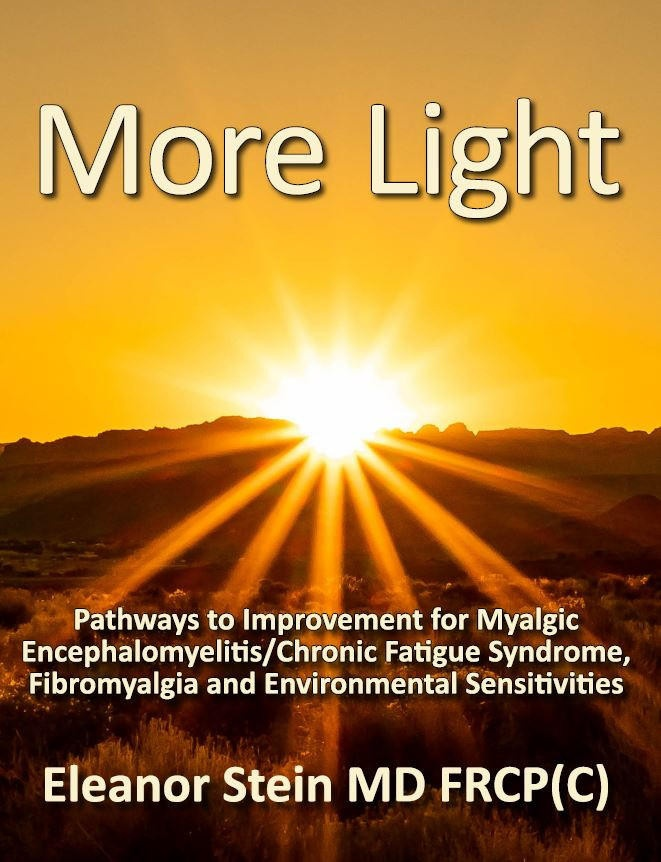 more light ebook by Eleanor Stein