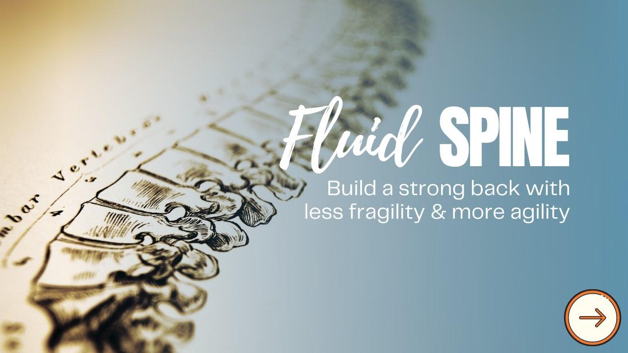 Fluid Spine Challenge