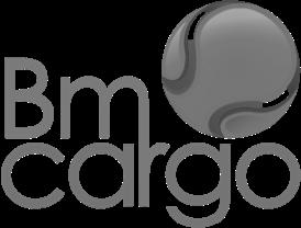 Bm Cargo Branding y Diseño Web