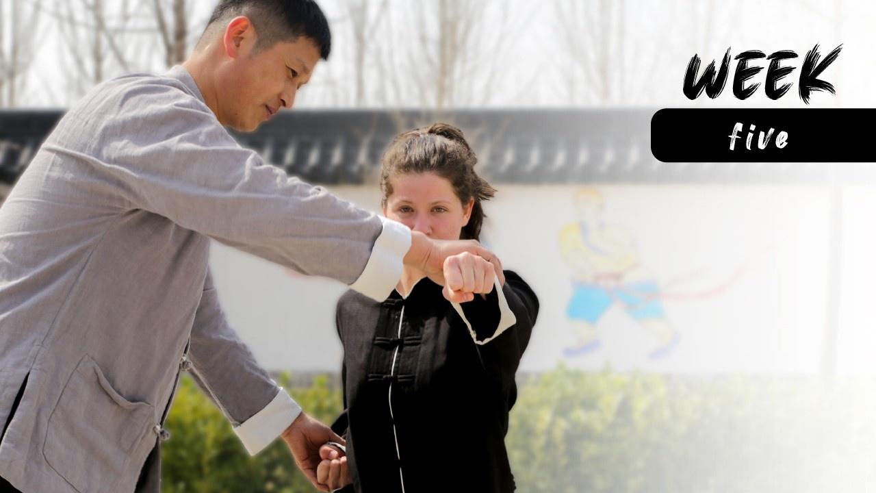 Kung Fu Program Week 5 Overview