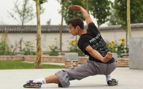 Shaolin Kung Fu Movement Combinations