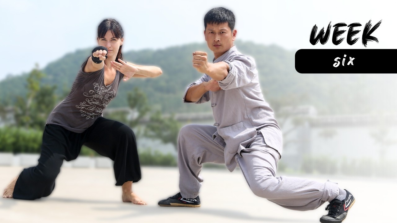 Kung Fu Program Week 6 Overview
