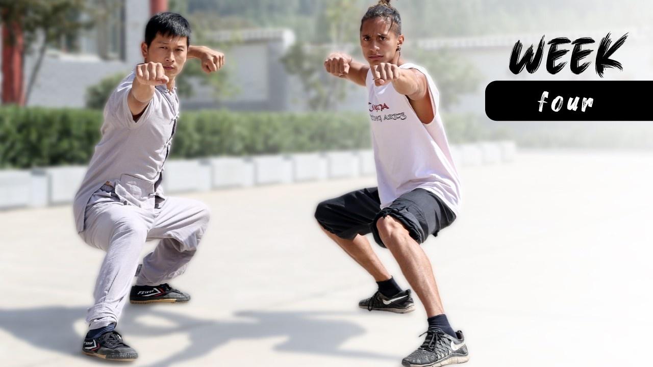 Kung Fu Program Week 4 Overview