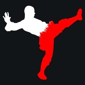 Shaolin Kung Fu Warrior Monk Icon