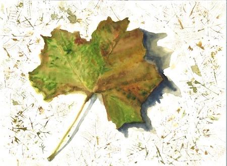 Feature Artist Elizabeth Reich still life painting of a leaf