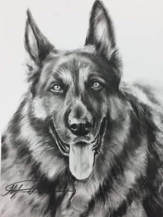 dry brush oil pet painting
