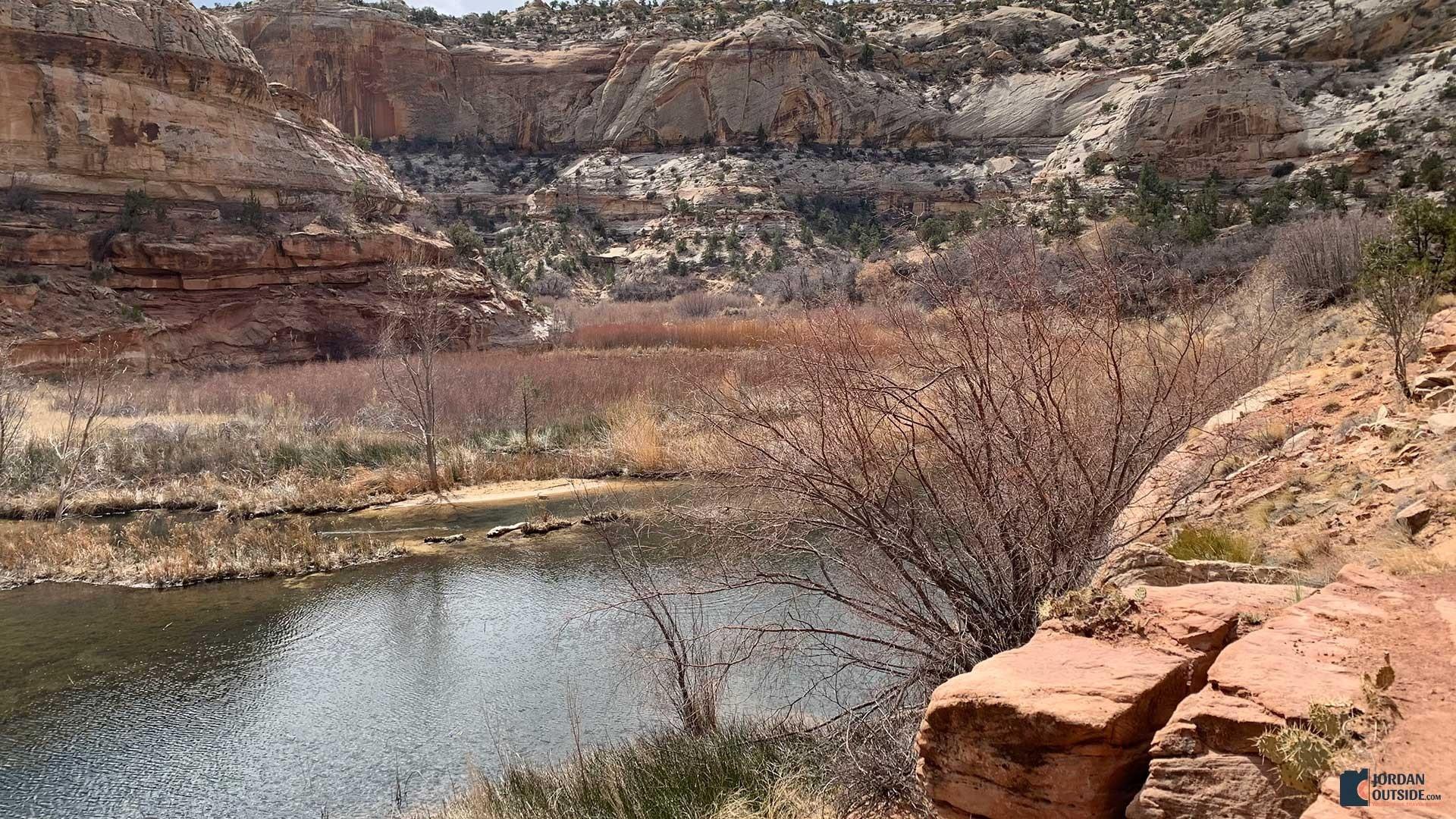 The lake at Lower Calf Creek Falls